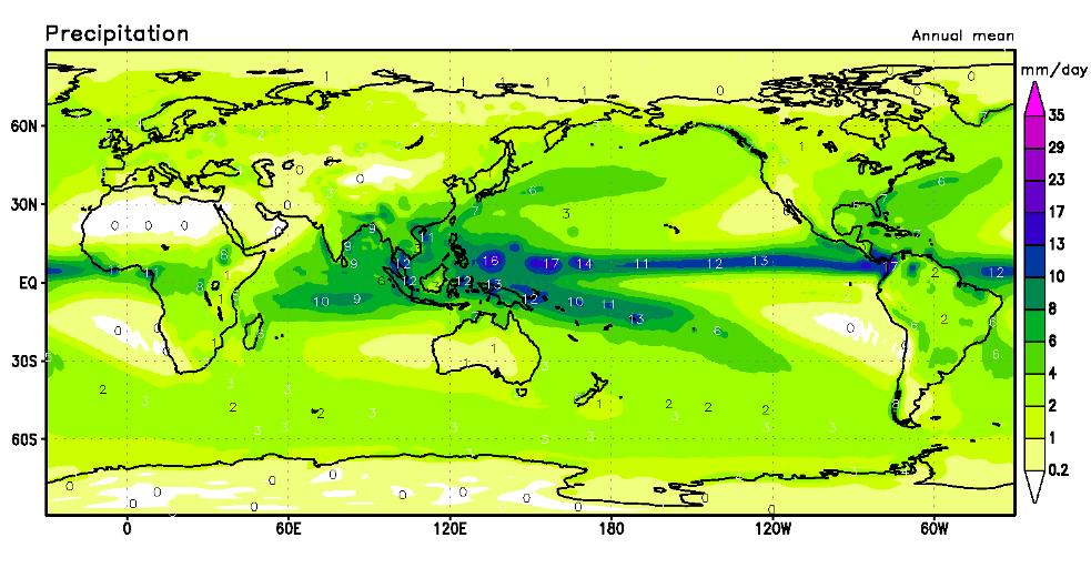 marine biome average rainfall