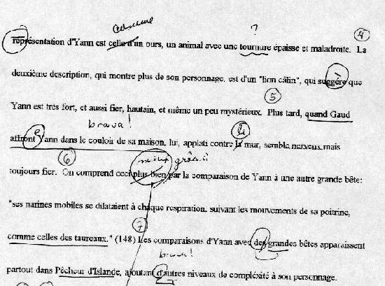 Social Inequality Essay  Examples Of Proposal Essays also Health Care Essay Topics  Essay Style Paper